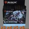 Kaldheim - Boîte de Boosters Collector (x3 ou Plus)