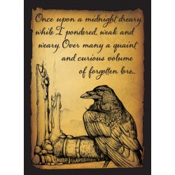 Protège-cartes Legion : Raven (x50)