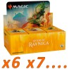 Booster Box (36 packs) : Guilds of Ravnica (x6 and more)